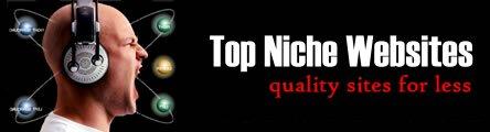 Top Niche Websites – Affordable Custom Websites