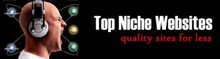 Top Niche Websites – Affordable Custom Websites